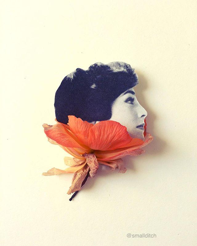 """""""Found Fashion"""" von Martha Haversham"""