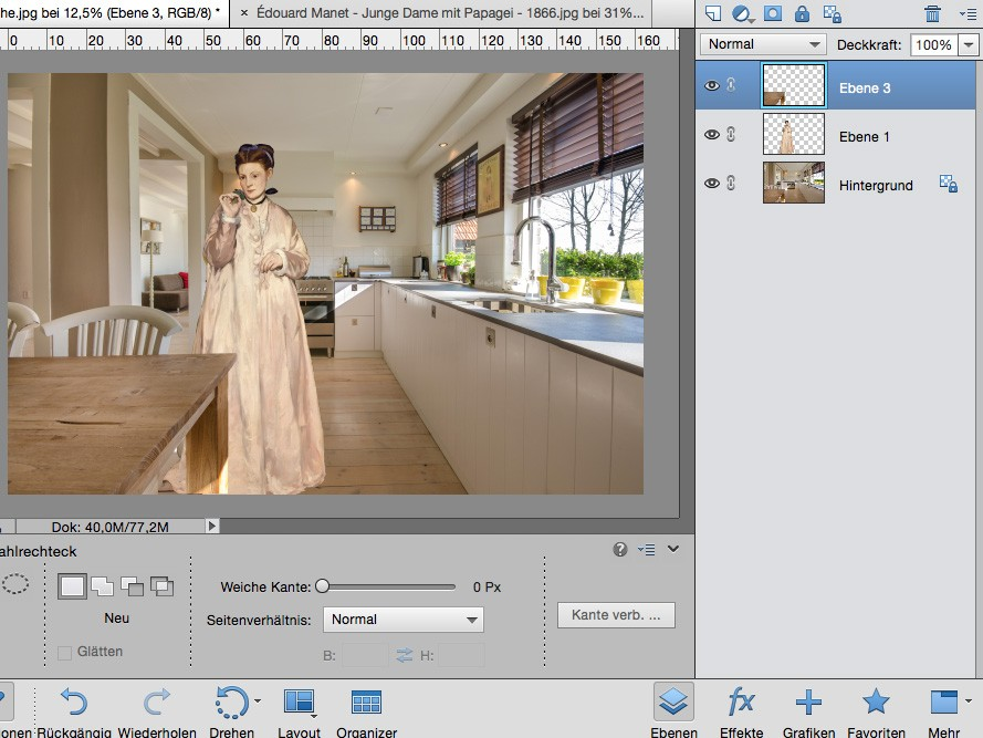 Digitale Collage - Bildbearbeitung am PC - Photoshop Screenshot